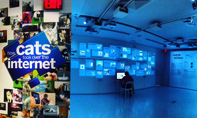 internet-cats-exhibit-nyc-museum-of-the-moving-image