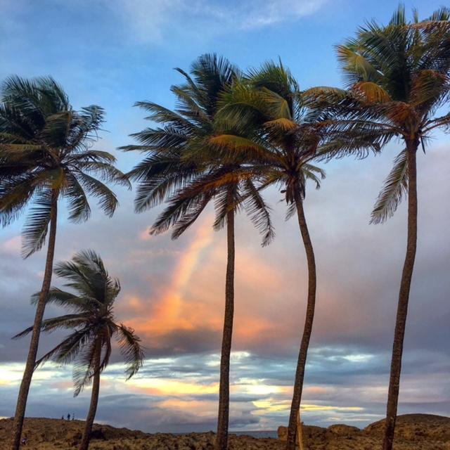 playa_puerto_nueveo_vega_baja_puerto_rico